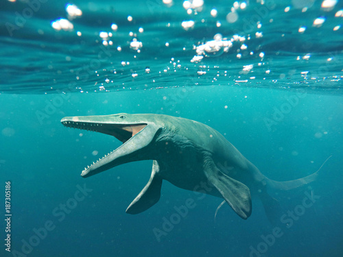 фотография Mosasaurus, 17m aquatic lizard, between 70 and 66 million years ago