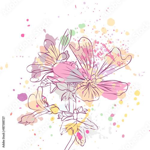 wektor rysunek kwiat