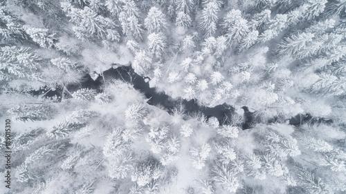 Widok z lotu ptaka las i rzeka przy zimą. Drzewa pokryte są śniegiem