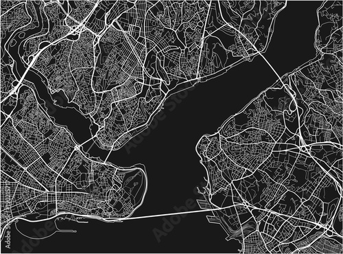 Obraz na plátně Black and white vector city map of Istanbul with well organized separated layers