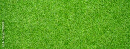 Fotografie, Obraz grass field background. green grass. green background