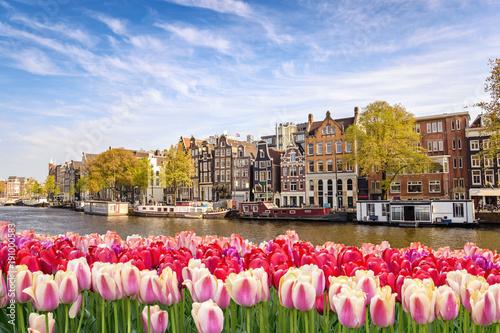 Naklejki na meble Tulipanowy horyzont w Amsterdamie