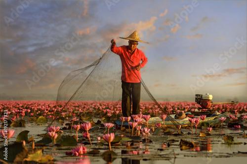 Thai fisherman trow the nets in flower lotus lake,  Thai people in Red Lotus lak Fototapete