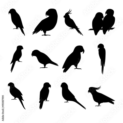 Set of parrot silhouette icons in flat style Fototapete