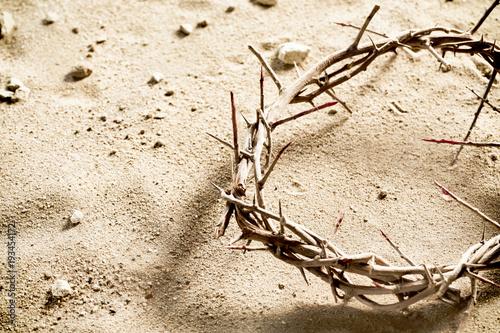 Valokuvatapetti Circlet or Crown of Thorns on barren sand