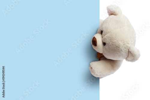 Teddy bear with blue blank space for commercial graphycs