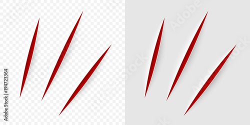 Fotografia Vector realistic red cut with a office knife