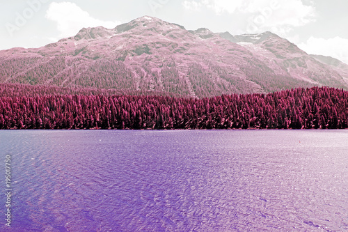 Canvas Print A view of a lake, forest and mountains in the alps switzerland in color infrared