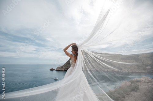 Canvas Print Beautiful bride stands on a cliff above the sea in a glamorous white wedding dress view of veil