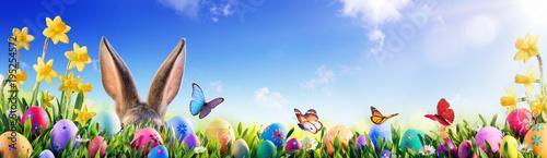 Wielkanoc - Królik I Zdobione Jajka W Kwiecistym Polu