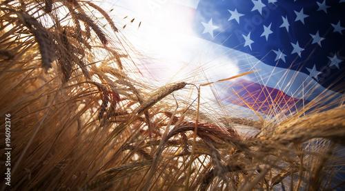 Stampa su Tela Flag of USA over wheat field