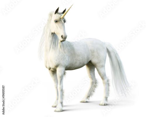 Canvas Print Majestic unicorn posing on a white isolated background