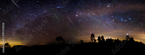 Canvas Print Milky way panorama over the forest with shower meteor.
