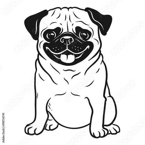 Photo Pug dog black and white hand drawn cartoon portrait