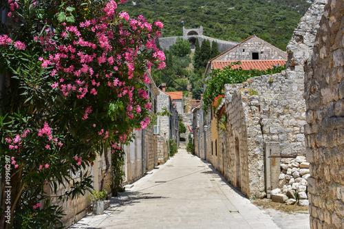 narrow romantic street between houses  in village in croatia