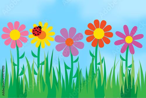 Kwiaty na tle nieba.