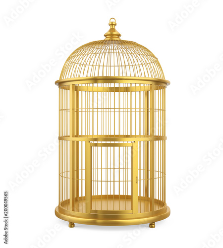 Fotografie, Tablou Birdcage Isolated