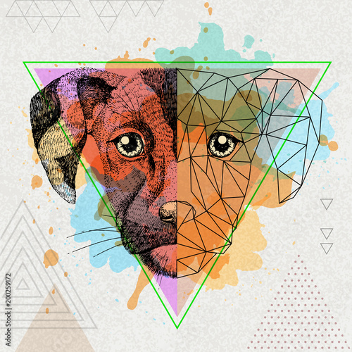 Fototapeta Hipster animal realistic and polygonal dog on artistic watercolor background