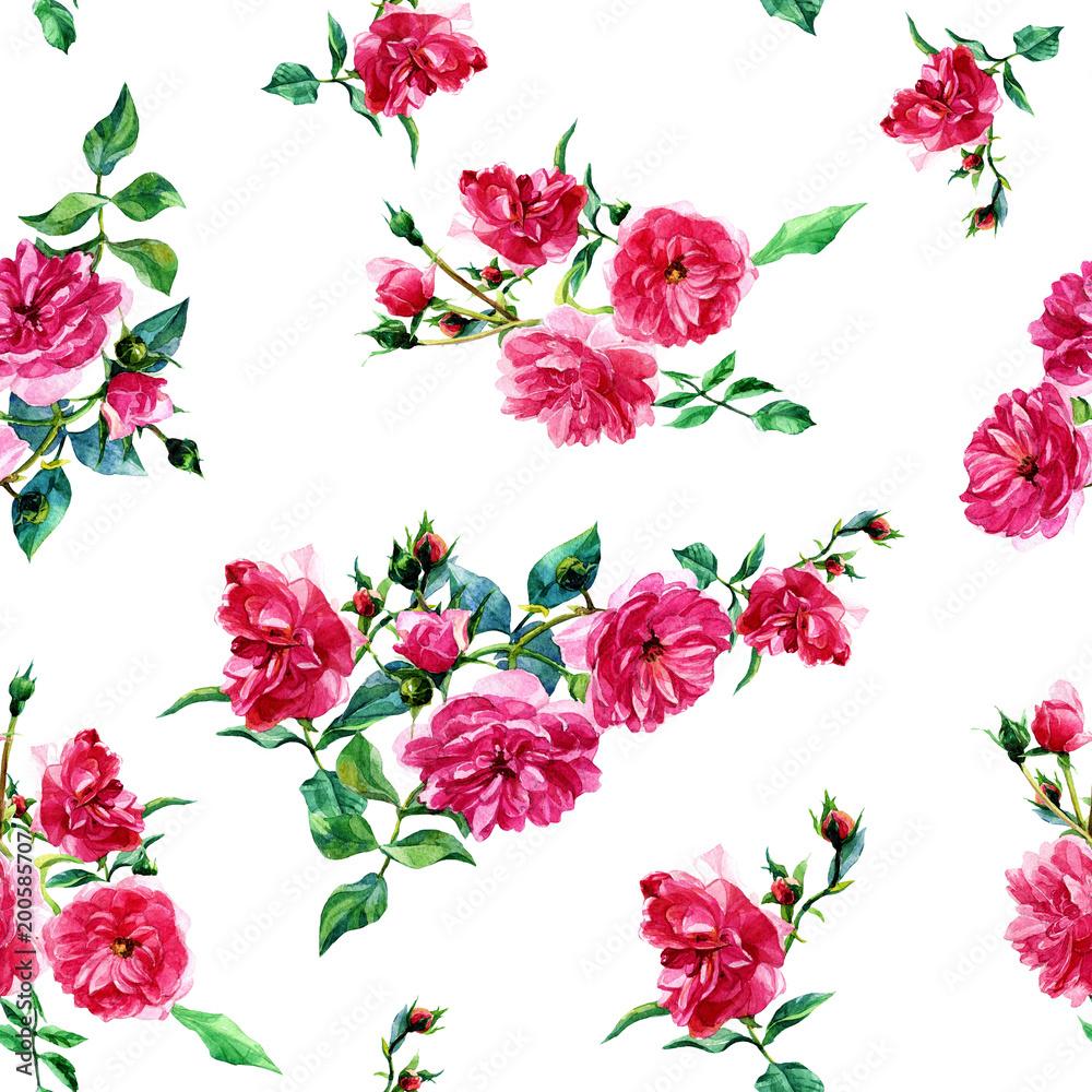 Fototapeta Bezszwowy wzór wielkie róże malował w akwareli
