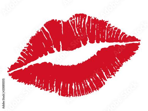 Photo Kiss. Female lips. Vector illustration