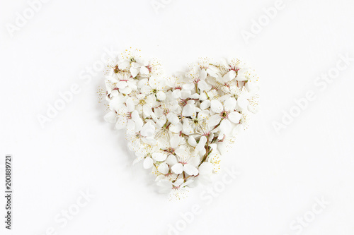 Heart made of white prunus flowers, cherry blossoms isolated on white wooden background. Flat lay feminine styled composition, top view. Spring concept. Floral pattern.