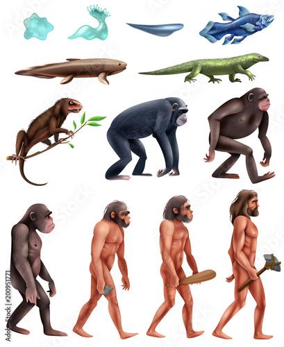 Slika na platnu Darwin Evolution Icon Set