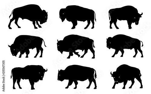 Fotografia bison silhouettes 2018