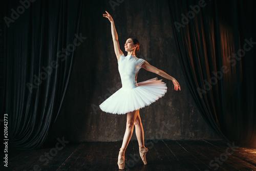 Photo Graceful ballerina dancing in ballet class