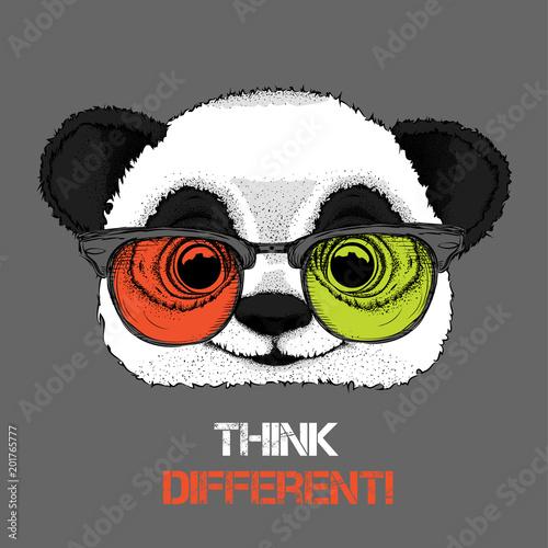 Portret pandy w kolorowych okularach. Myśl inaczej. Ilustracji wektorowych.