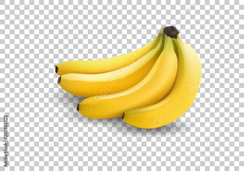 Cuadros en Lienzo realistic illustration bananas, 3d vector icons