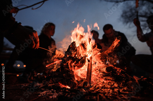 Young and cheerful friends sitting and fry marshmallows near bonfire at night Fototapete
