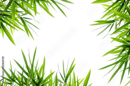 Naklejka na szafę Liście bambusa na białym