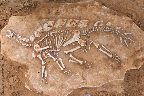 Slika na platnu Excavations of the dinosaur. The remains of the skeleton found