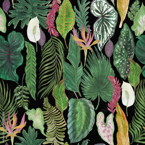 watercolor painting seamless pattern with tropical leaves. Vintage illustration