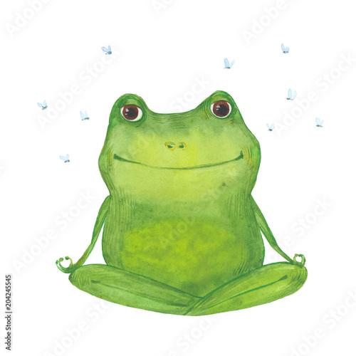 Fototapeta premium medytując zielona żaba