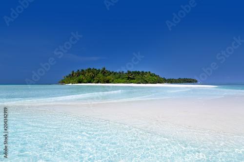 Wild Maldives island with sandy beach