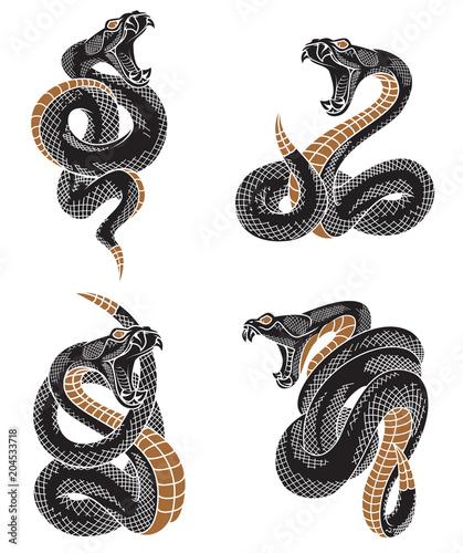 Photo Viper snake set