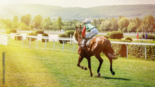 Fényképezés Race horses with jockeys on the home straight.