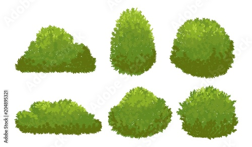 Slika na platnu Garden green bushes