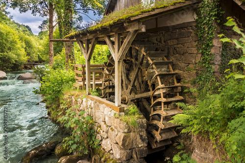 Carta da parati Alte Wassermühle in Ottenhöfen