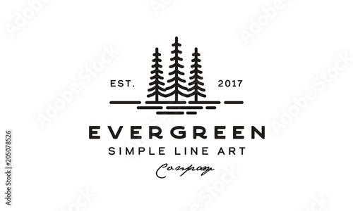 Fotografía pine evergreen fir hemlock spruce conifer cedar coniferous cypress larch pinus t