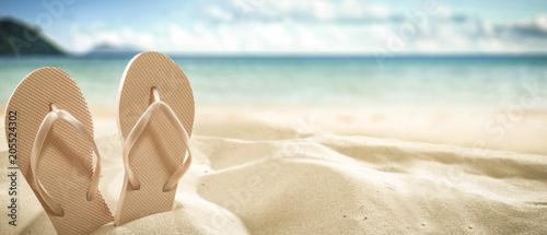 Fotografie, Obraz flip flops on beach and summer time