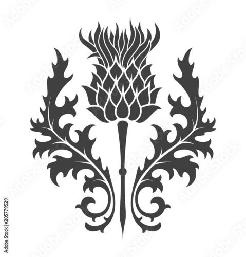 Valokuvatapetti thistle, heraldic symbol of Scotland