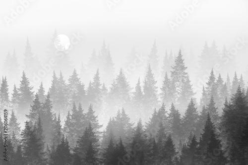 Minimalistyczny las we mgle. Malarstwo cyfrowe.