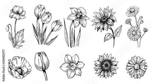 Canvas Print Set of flower
