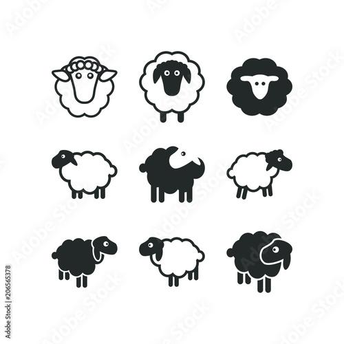 Fotografia Sheep logo icon template