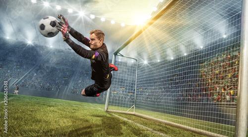 Leinwand Poster Torwart hält Ball