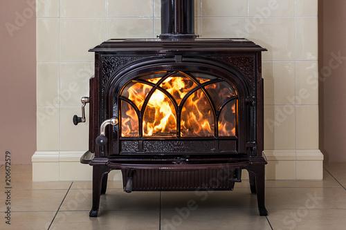 Goat stove, fireplace Fototapeta