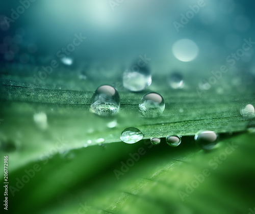Photo drops of dew on a close-up sheet