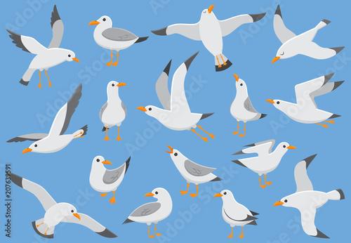 Wallpaper Mural Atlantic white seabird fly at sky